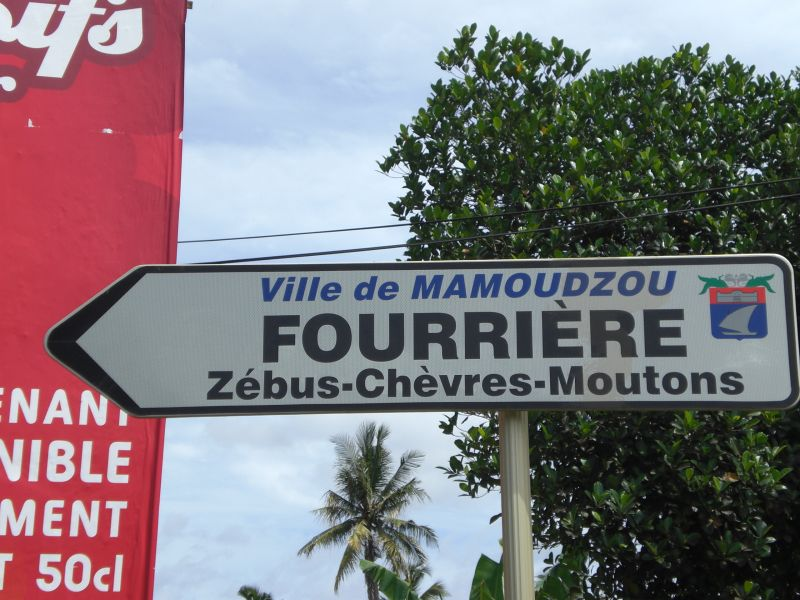 http://mzungus.unblog.fr/files/2009/02/cimg2371.jpg